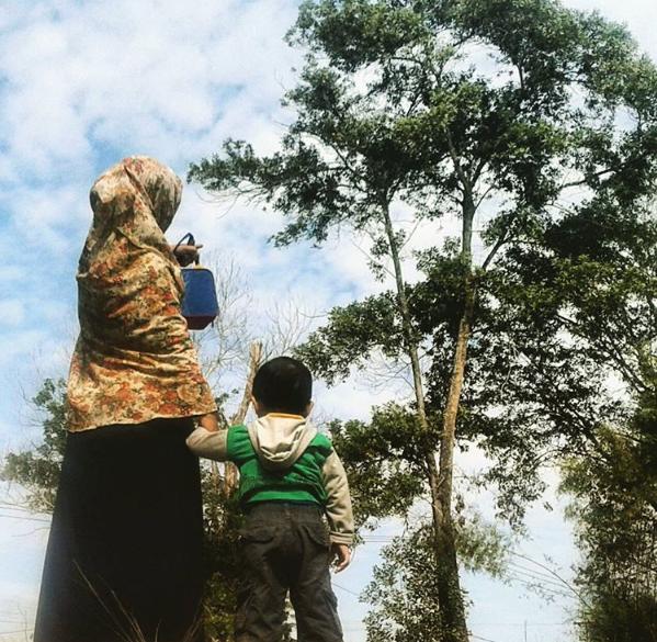 Pohon kesabaran yang ditanam Mbak Nova selama lima tahun kini berbuah manis (Picture from instagram Nova Violita)